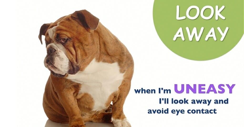 Dog Body Language by DogSense Online