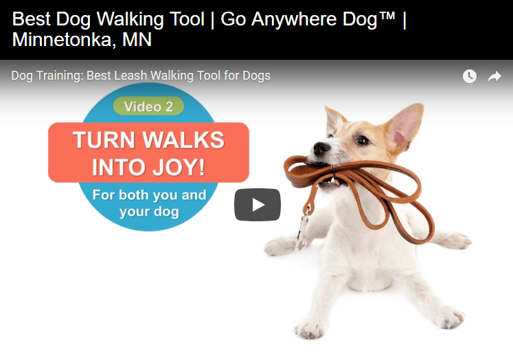 Dog Walking Tools for Minneapolis Lakes