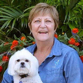 Jeannie Dog Trainer in Eagan, MN