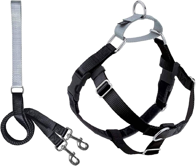Best Dog Walking Harness